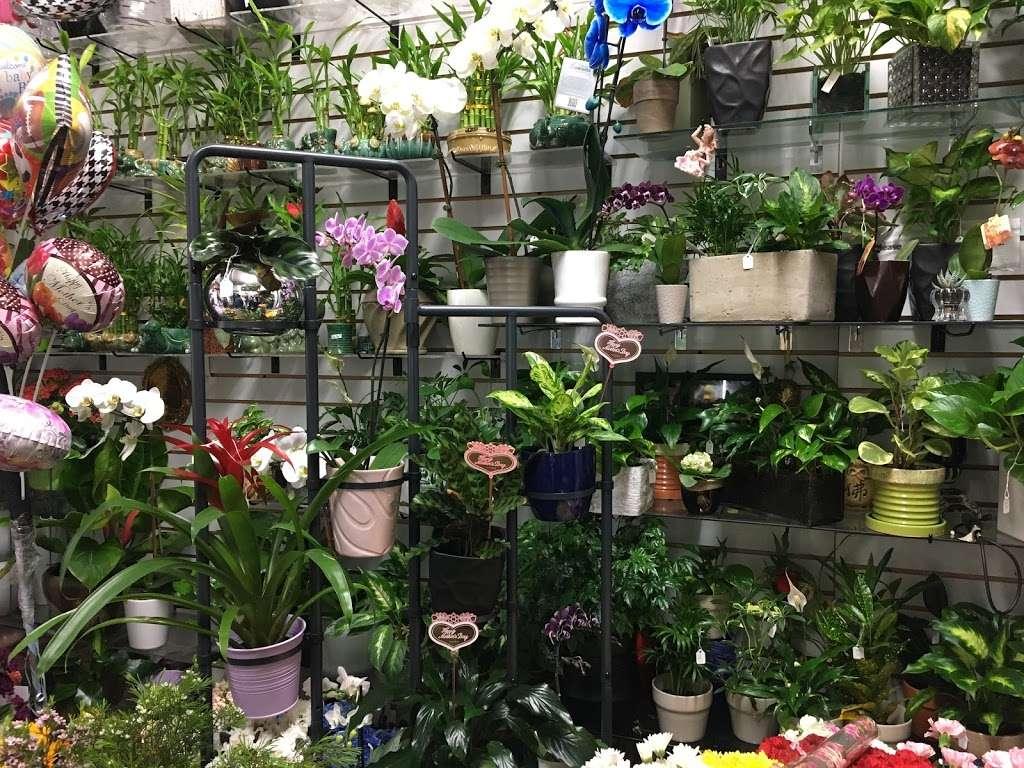 Yesenias Flowers - florist  | Photo 2 of 10 | Address: 1537 Castle Hill Ave, Bronx, NY 10462, USA | Phone: (347) 657-0022