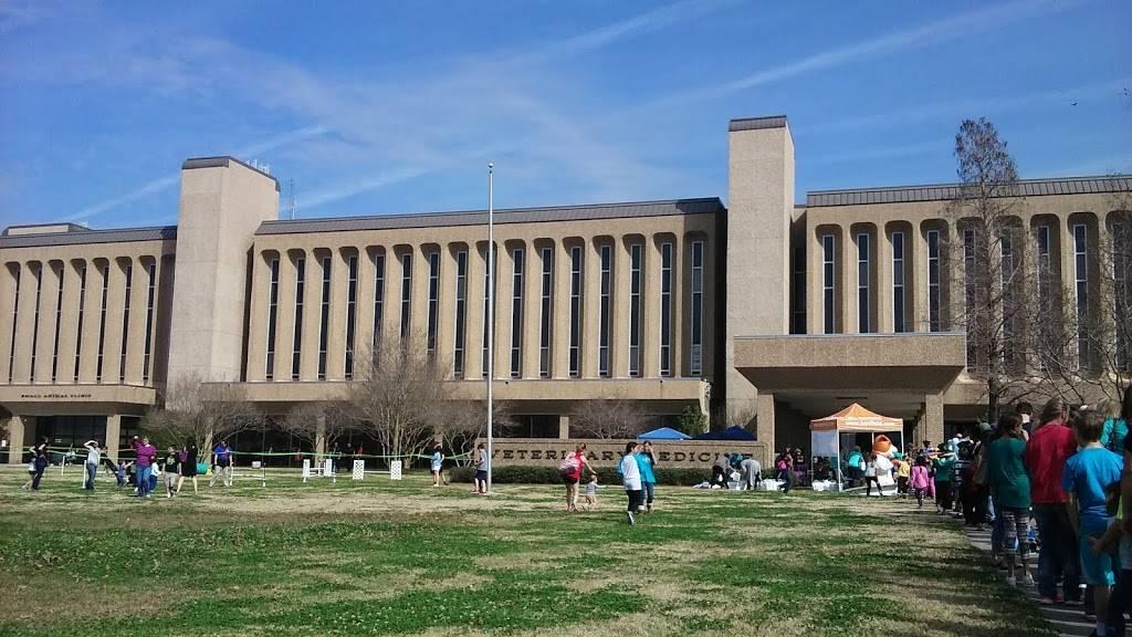 LSU School of Veterinary Medicine - veterinary care  | Photo 1 of 9 | Address: Skip Bertman Dr, Baton Rouge, LA 70803, USA | Phone: (225) 578-9900