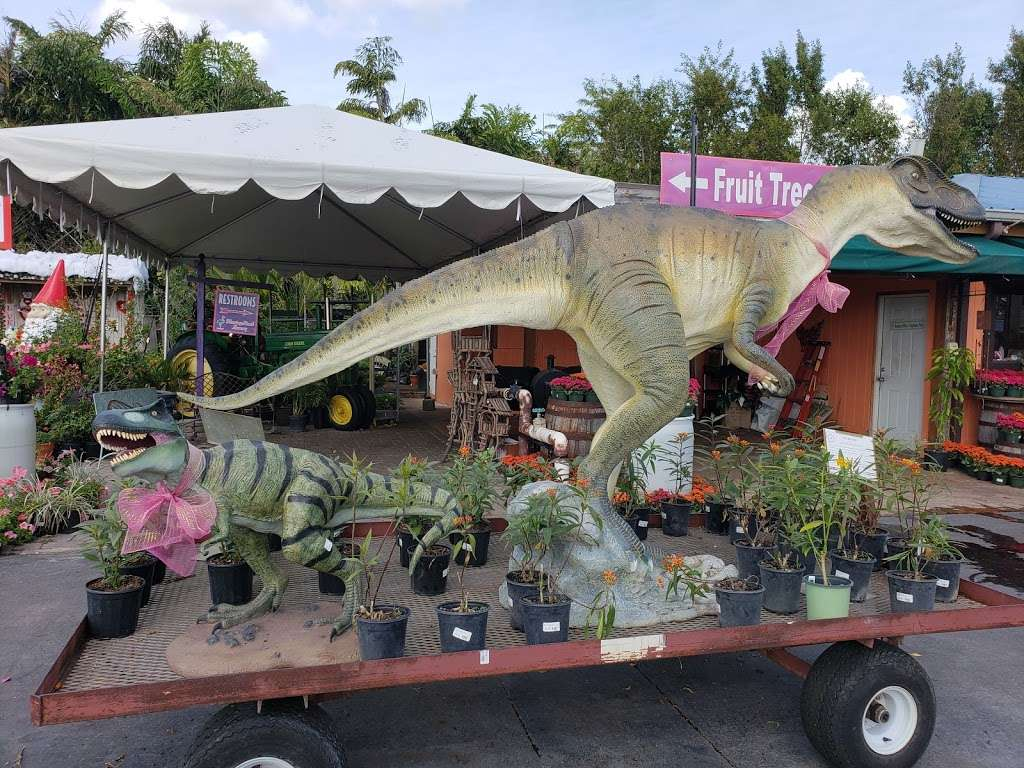 Flamingo Road Nursery - store  | Photo 9 of 10 | Address: 1655 S Flamingo Rd, Davie, FL 33325, USA | Phone: (954) 476-7878
