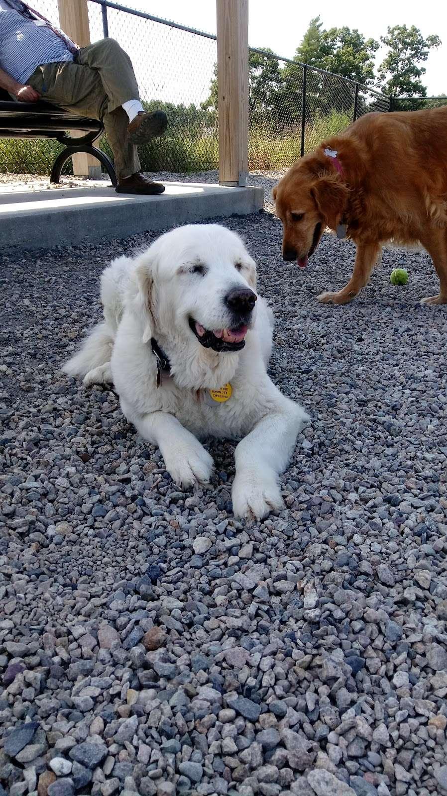 Boneyard Dog Park - park  | Photo 1 of 10 | Address: Kingston, MA 02364, USA