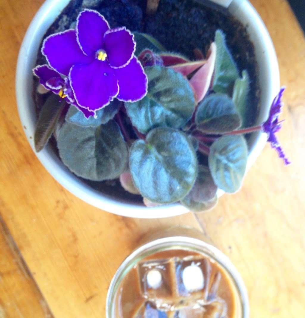 Cafe Franco - cafe  | Photo 3 of 10 | Address: 240 Funston Rd, San Francisco, CA 94123, USA | Phone: (415) 771-2268