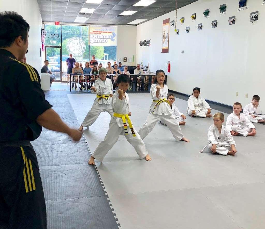 Master LEEs Tiger Kicks Martial Arts Tae kwon Do - gym  | Photo 9 of 10 | Address: 317 E Street Rd, Warminster, PA 18974, USA | Phone: (215) 444-0899