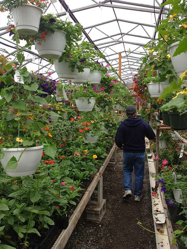 Hueters Greenhouse - store  | Photo 7 of 9 | Address: 3465 Deininger Rd, York, PA 17406, USA | Phone: (717) 755-5629
