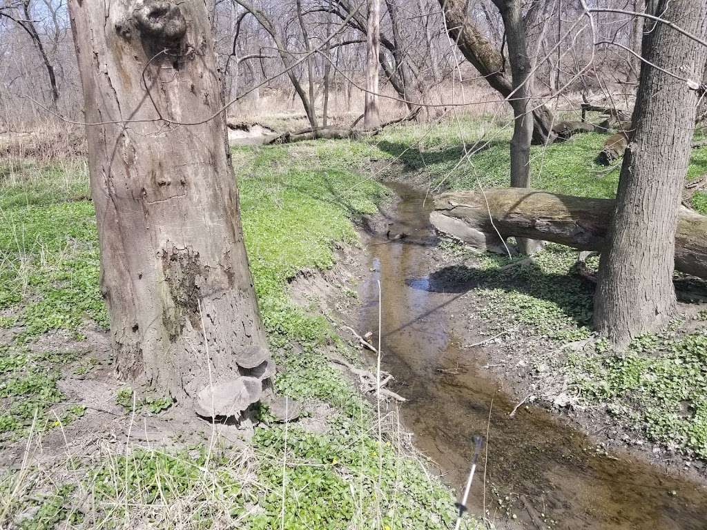 Wampum Lake Woods - park  | Photo 1 of 10 | Address: 598 Thornton Lansing Rd, Thornton, IL 60476, USA | Phone: 0000000000