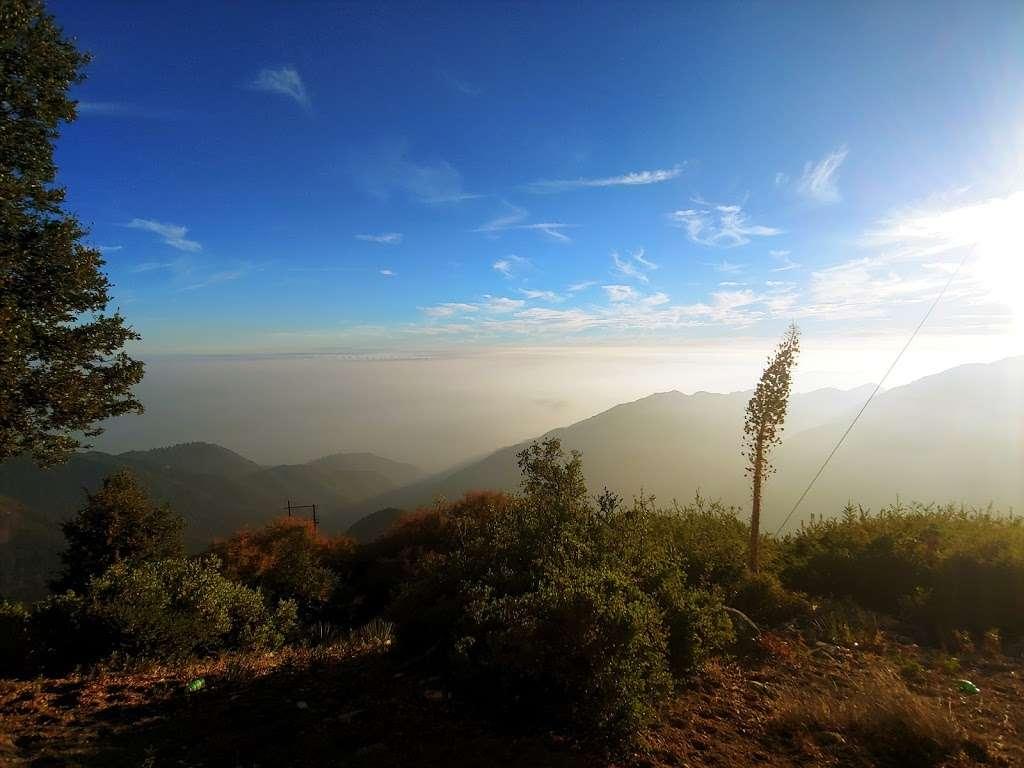 Secret Swings Mount Wilson - park  | Photo 3 of 10 | Address: Mt Wilson Circle Road, Pasadena, CA 91107, USA