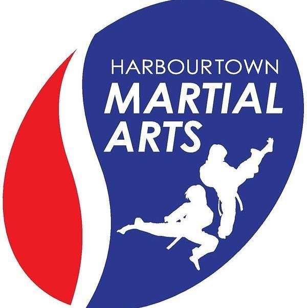 Harbour Town Martial Arts - gym    Photo 7 of 7   Address: 20 Harbourtown Center, Noblesville, IN 46062, USA   Phone: (317) 460-6606