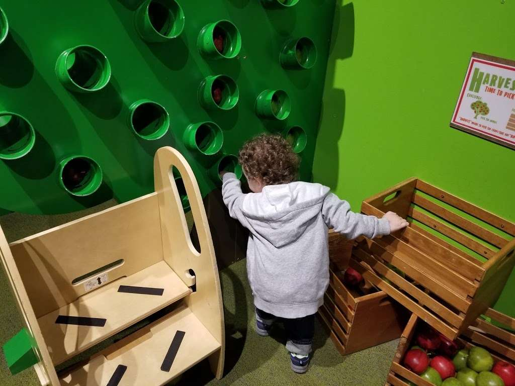Hands-on House, Childrens Museum of Lancaster - museum  | Photo 7 of 10 | Address: 721 Landis Valley Rd, Lancaster, PA 17601, USA | Phone: (717) 569-5437