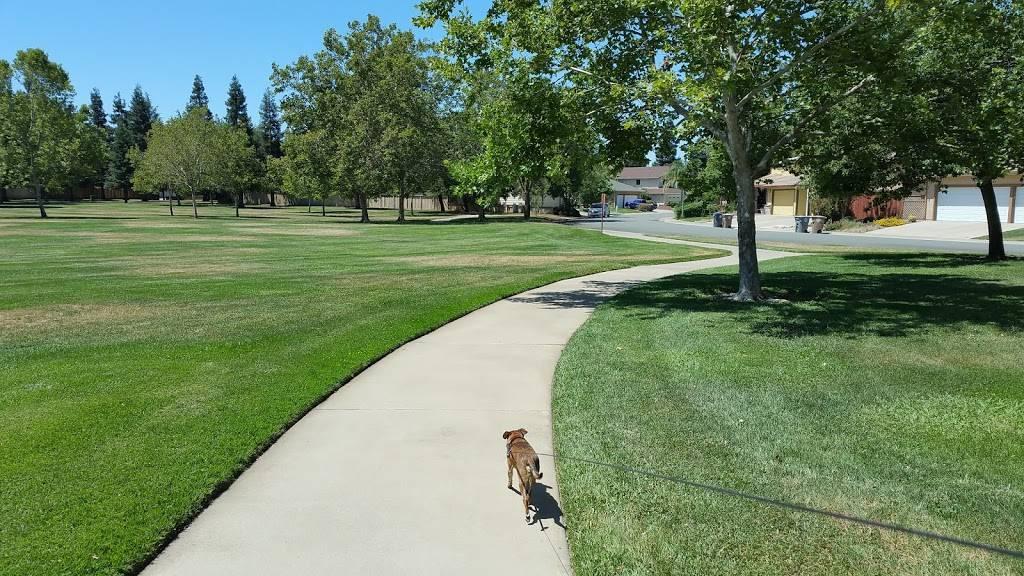 Mix Park - park    Photo 4 of 9   Address: 8770 Goldy Glen Way, Elk Grove, CA 95624, USA   Phone: (916) 405-5300