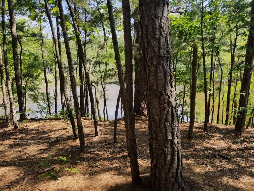 South Vineland Disc Golf Course- Crystal Lake - park  | Photo 8 of 10 | Address: W Elmer Rd, Vineland, NJ 08360, USA