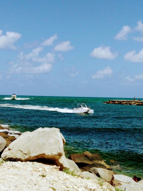 Haulover Park Bayside Picnic Area - park  | Photo 4 of 10 | Address: 13401 Collins Ave, Miami Beach, FL 33154, USA