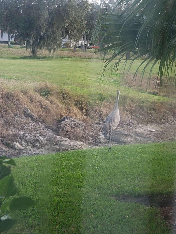 Majestic View Cottages - lodging    Photo 9 of 10   Address: Creekwood Ln, Mulberry, FL 33860, USA   Phone: (800) 519-3342