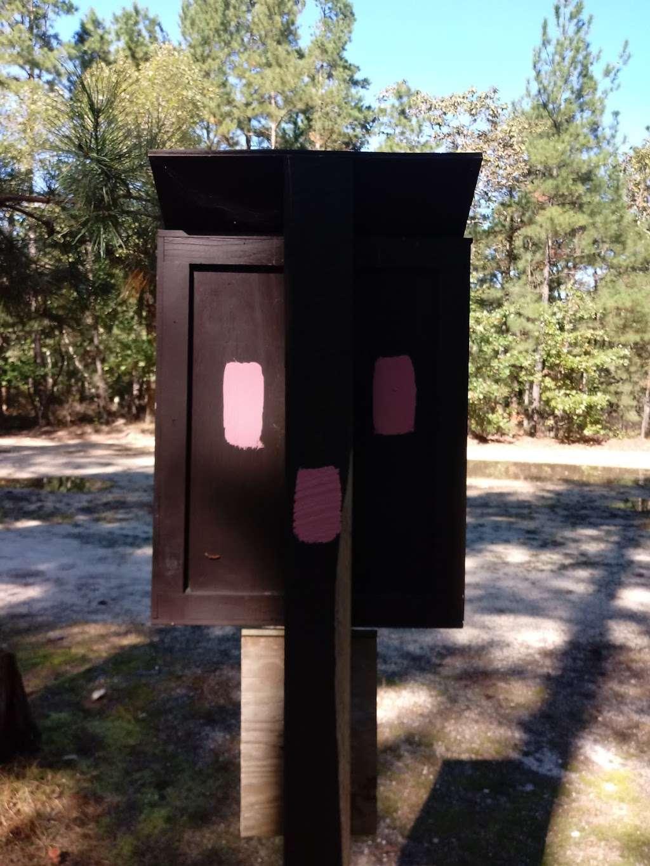 Batona Trail Ongs Hat Parking - park  | Photo 10 of 10 | Address: Turkey Buzzard Bridge Rd, Pemberton, NJ 08068, USA