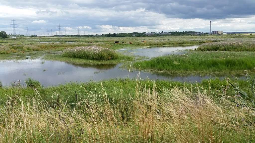 Rainham Marshes nature reserve - park  | Photo 1 of 10 | Address: Purfleet Environmental and Educational Centre, New Tank Hill Rd, Purfleet, South Ockendon RM19 1SZ, UK | Phone: 01708 899840