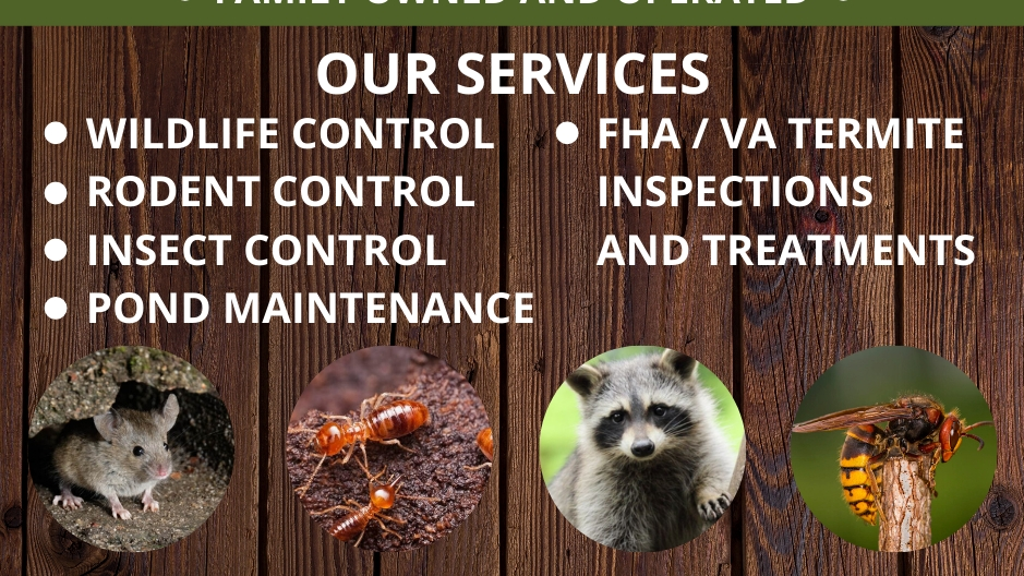 H&H Pest Control - home goods store    Photo 3 of 5   Address: 4680 Norrisville Rd, White Hall, MD 21161, USA   Phone: (443) 567-1024