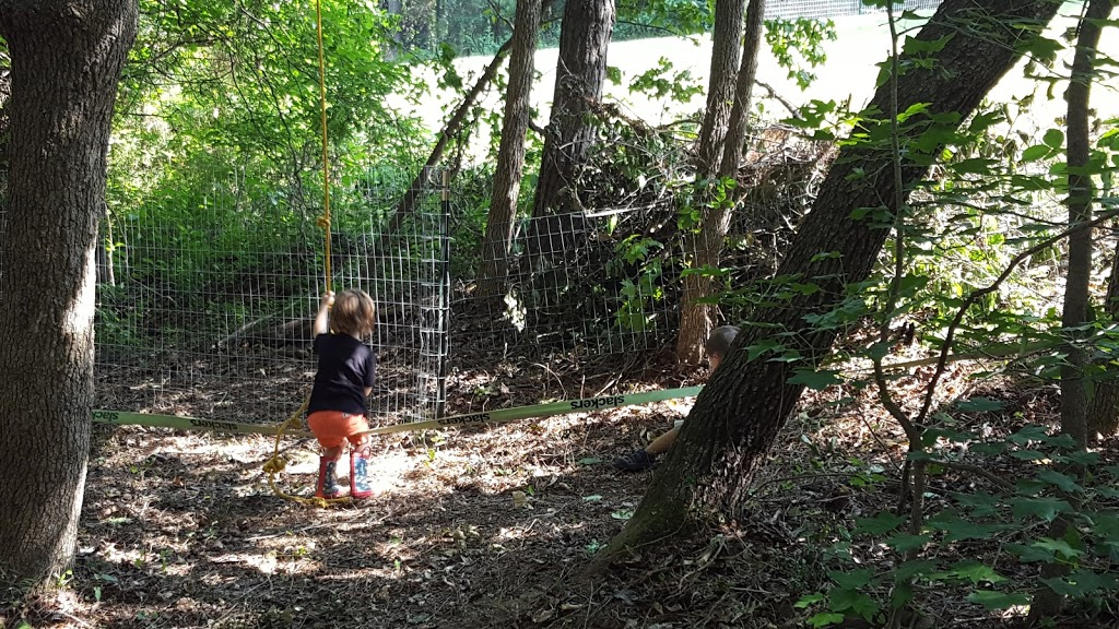Wildflower Preschool & Kindergarten - school  | Photo 3 of 10 | Address: 3100 Damascus Church Rd, Chapel Hill, NC 27516, USA | Phone: (919) 260-6859