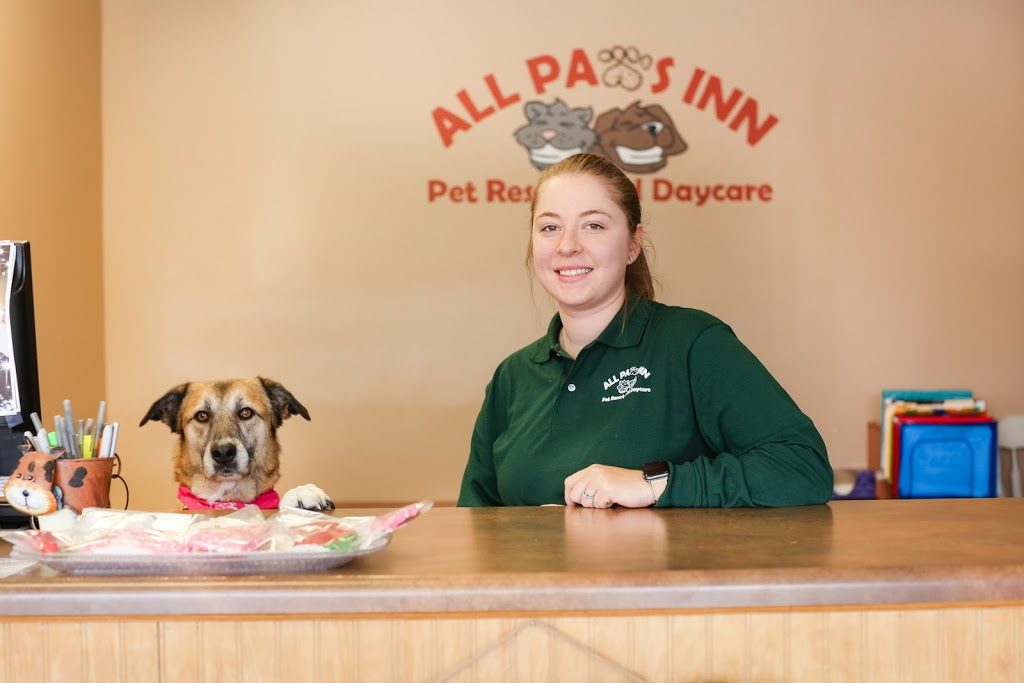 All Paws Inn Pet Resort and Daycare - pet store  | Photo 9 of 10 | Address: 1900 Lebanon Ave, Belleville, IL 62221, USA | Phone: (618) 233-7297