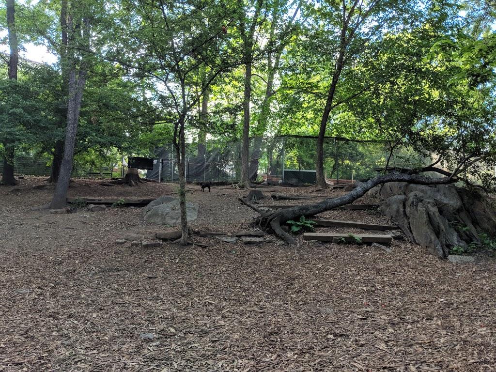 St. Nicholas Park Dog Run - park  | Photo 1 of 10 | Address: Unnamed Road, New York, NY 10032, USA | Phone: (212) 639-9675