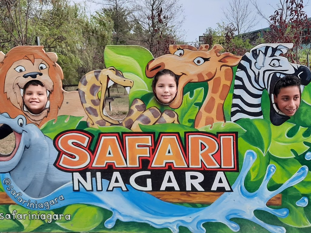 Safari Niagara - zoo    Photo 4 of 10   Address: 2821 Stevensville Rd, Stevensville, ON L0S 1S0, Canada   Phone: (905) 382-9669