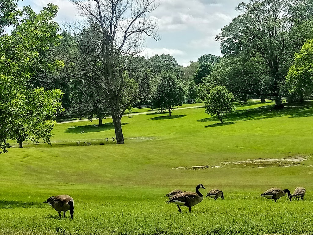 Tilles Park - park  | Photo 4 of 10 | Address: 9551 Litzsinger Rd, St. Louis, MO 63124, USA | Phone: (314) 615-4386