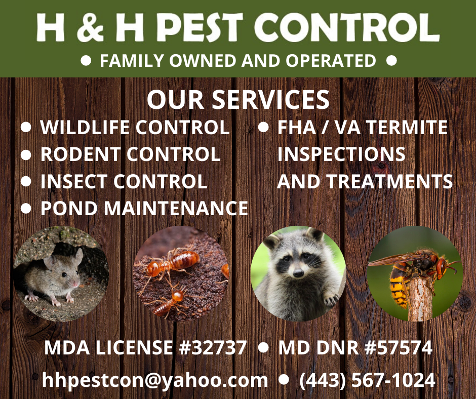 H&H Pest Control - home goods store    Photo 4 of 5   Address: 4680 Norrisville Rd, White Hall, MD 21161, USA   Phone: (443) 567-1024