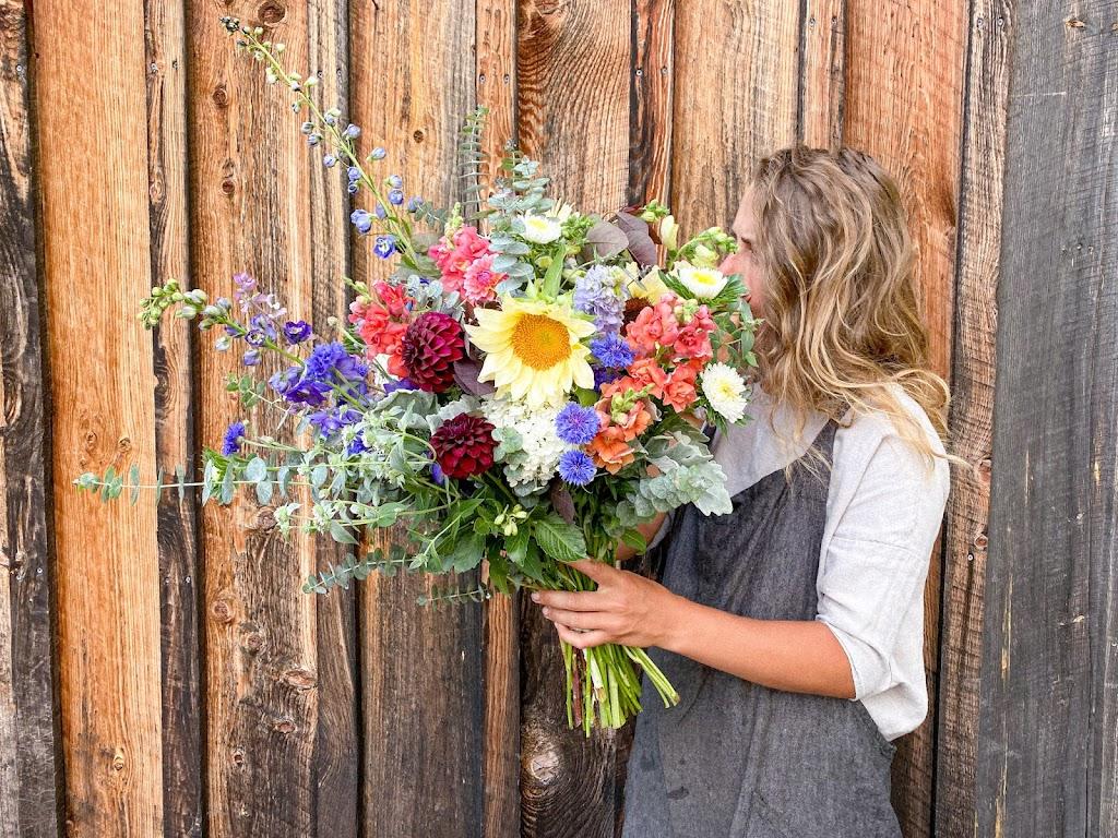 Pisarcik Flower Farm - florist    Photo 8 of 10   Address: 365 Browns Hill Rd, Valencia, PA 16059, USA   Phone: (724) 898-1434