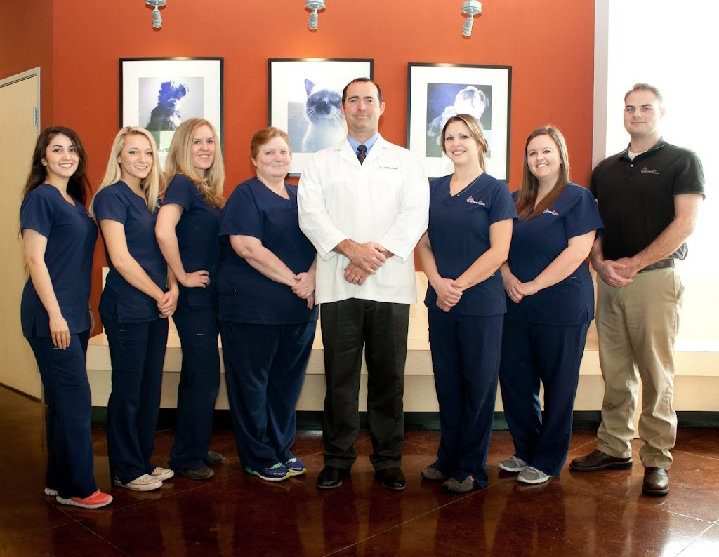 Coit North Veterinary Hospital - veterinary care    Photo 7 of 10   Address: 8937 Coit Rd, Plano, TX 75024, USA   Phone: (214) 618-8282