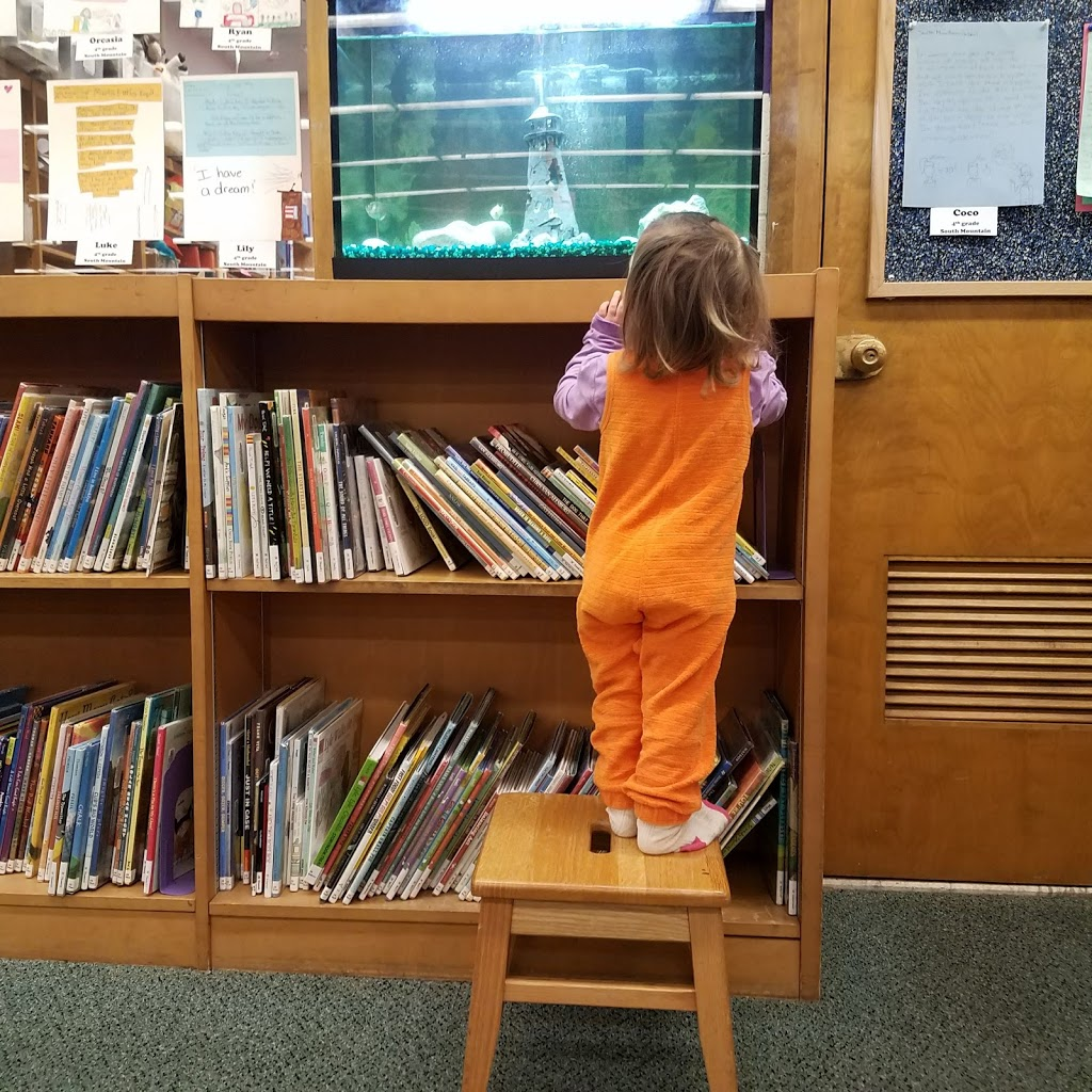 Maplewood Memorial Library - library  | Photo 9 of 10 | Address: 51 Baker St, Maplewood, NJ 07040, USA | Phone: (973) 762-1560