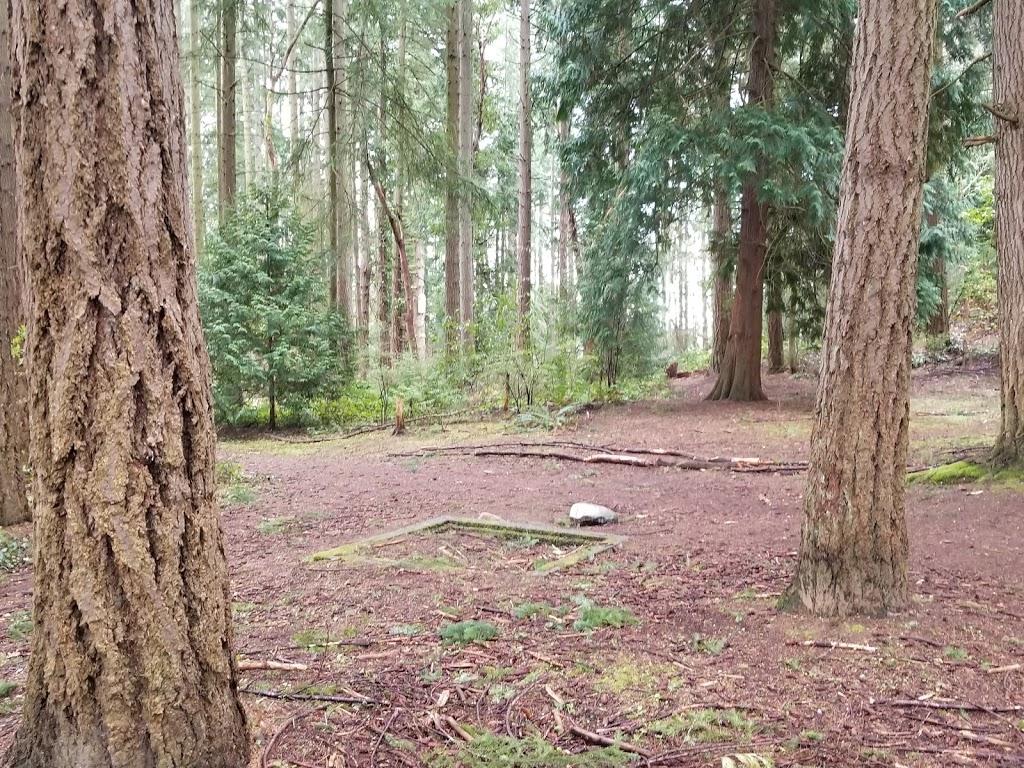 South Woods Park - park    Photo 1 of 10   Address: 2210 NE 150th St, Shoreline, WA 98155, USA   Phone: (206) 363-5517