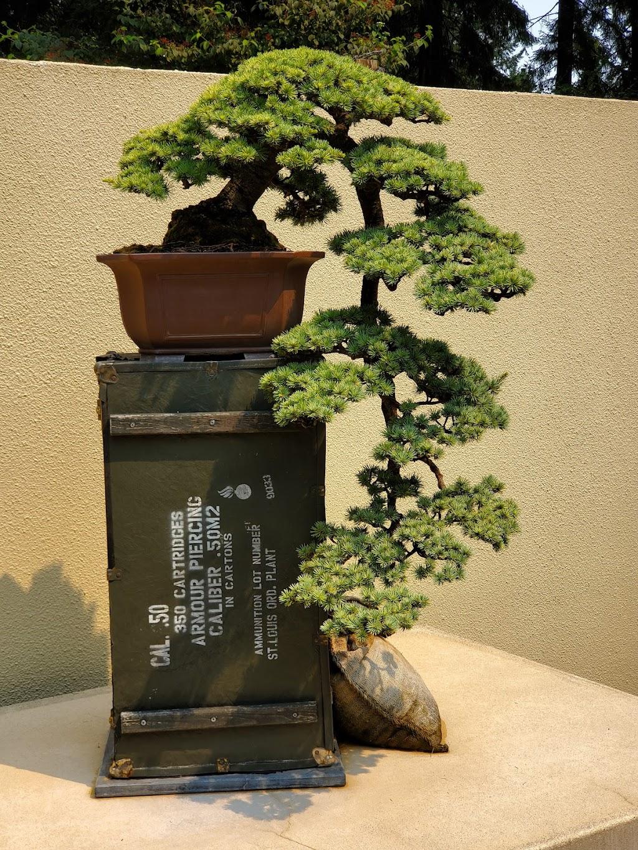 Pacific Bonsai Museum - museum    Photo 2 of 10   Address: 2515 S 336th St, Federal Way, WA 98003, USA   Phone: (253) 353-7345