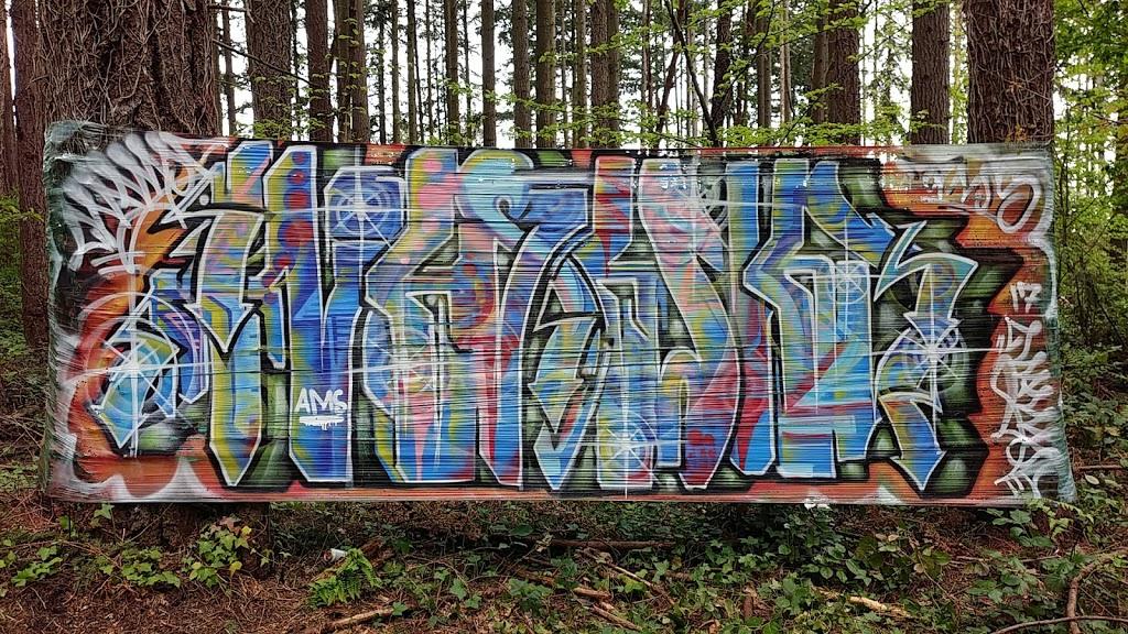South Woods Park - park    Photo 4 of 10   Address: 2210 NE 150th St, Shoreline, WA 98155, USA   Phone: (206) 363-5517