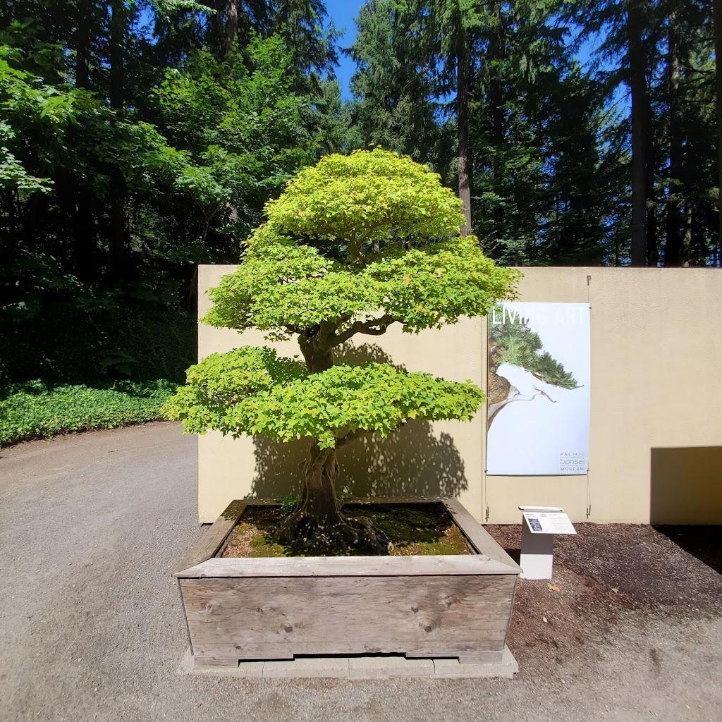 Pacific Bonsai Museum - museum    Photo 1 of 10   Address: 2515 S 336th St, Federal Way, WA 98003, USA   Phone: (253) 353-7345