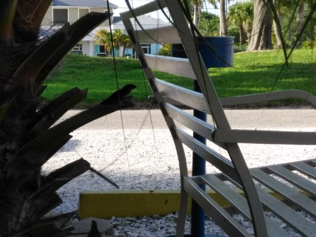 Driftwood Motel - lodging  | Photo 7 of 10 | Address: 5108 Gulf Dr, Holmes Beach, FL 34217, USA | Phone: (941) 778-2111