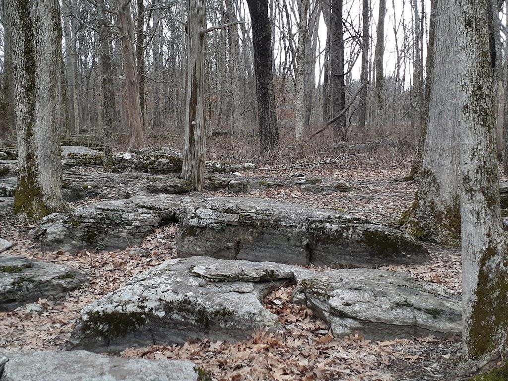 Stones River National Battlefield - museum  | Photo 7 of 10 | Address: 3501 Old Nashville Hwy, Murfreesboro, TN 37129, USA | Phone: (615) 893-9501