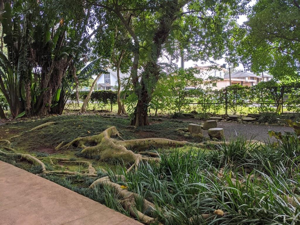 Wahiawā Botanical Garden - park  | Photo 2 of 10 | Address: 1396 California Ave, Wahiawa, HI 96786, USA | Phone: (808) 621-7321