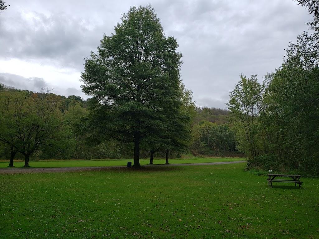 Brush Creek Park - park  | Photo 5 of 10 | Address: PA-588, Beaver Falls, PA 15010, USA | Phone: (724) 770-2060
