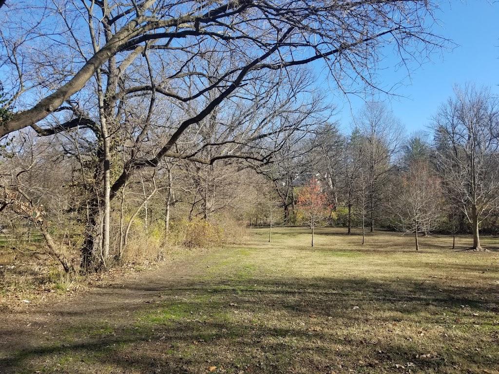 Larson Park - park  | Photo 4 of 10 | Address: 520 W Kirkham Ave, Webster Groves, MO 63119, USA | Phone: (314) 963-5300