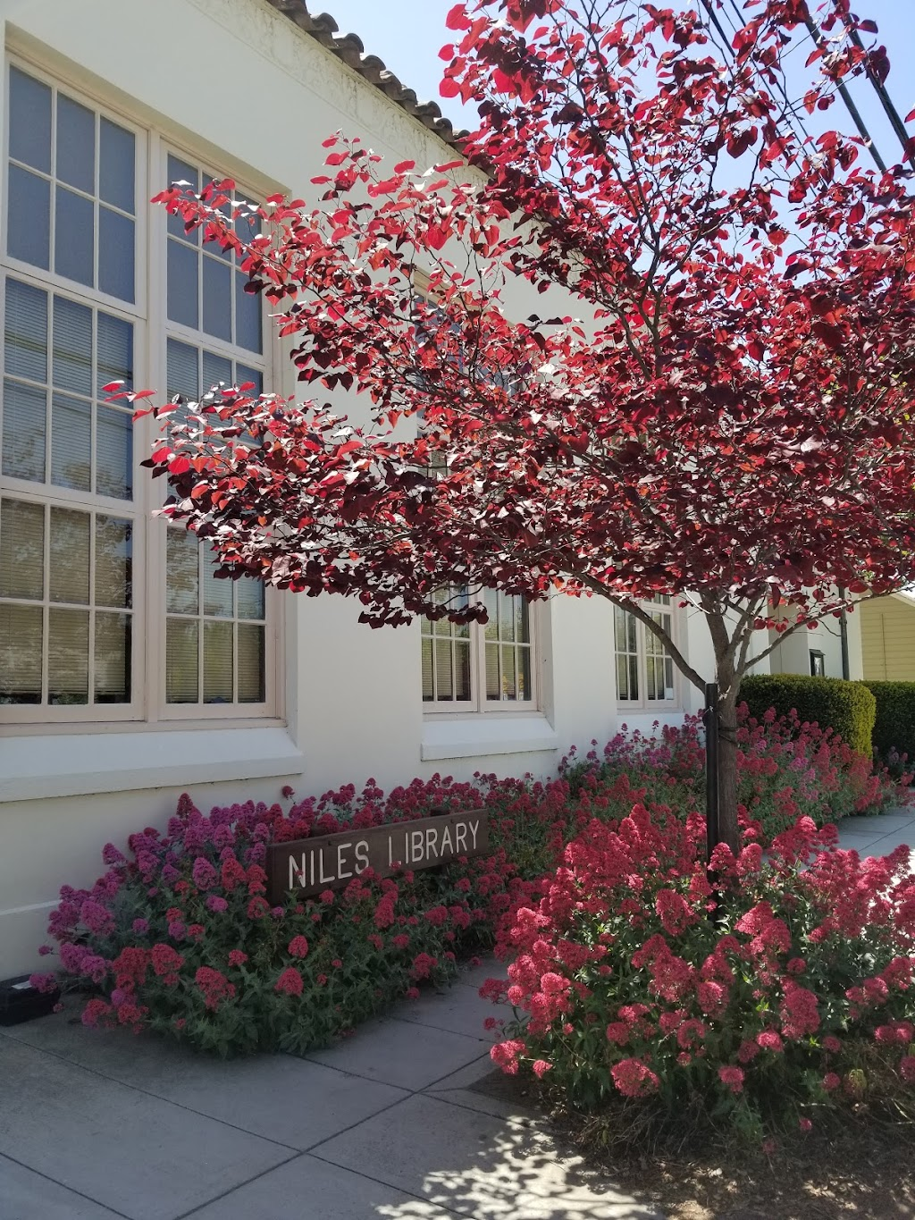 Niles Library - library  | Photo 3 of 10 | Address: 150 I St, Fremont, CA 94536, USA | Phone: (510) 795-2626