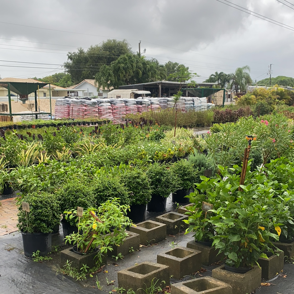 Miros Nursery and Landscaping - store  | Photo 9 of 10 | Address: 3600 SW 102nd Ave, Miami, FL 33165, USA | Phone: (305) 222-0202
