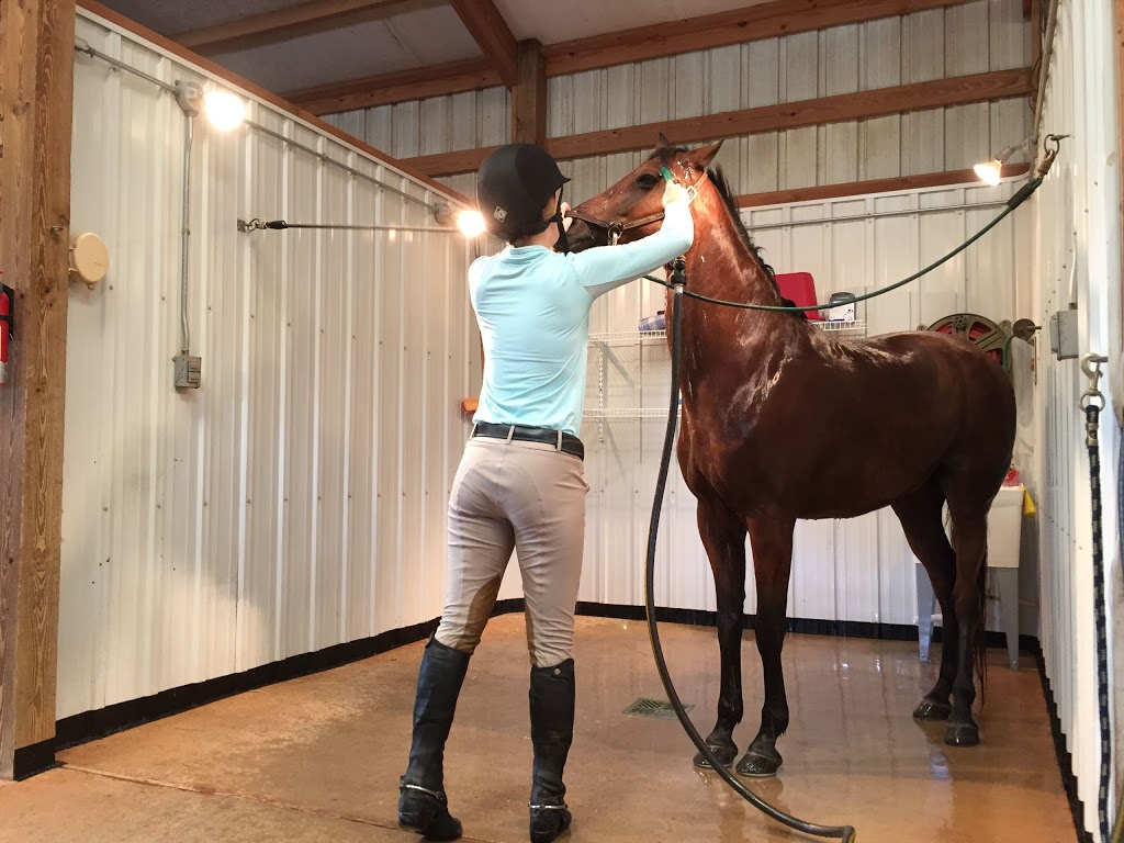 Canter Hill Stables, Inc - travel agency  | Photo 6 of 10 | Address: 6853 US-158, Stokesdale, NC 27357, USA | Phone: (336) 447-3939