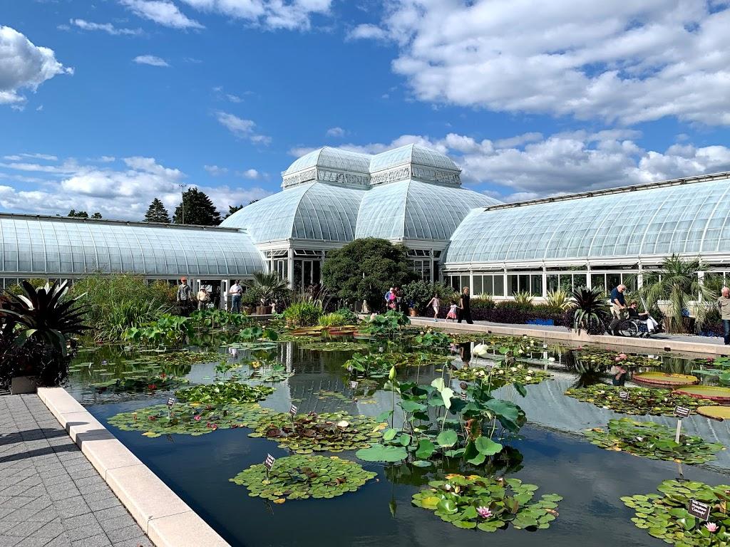 New York Botanical Garden - museum  | Photo 2 of 10 | Address: 2900 Southern Blvd, Bronx, NY 10458, USA | Phone: (718) 817-8700
