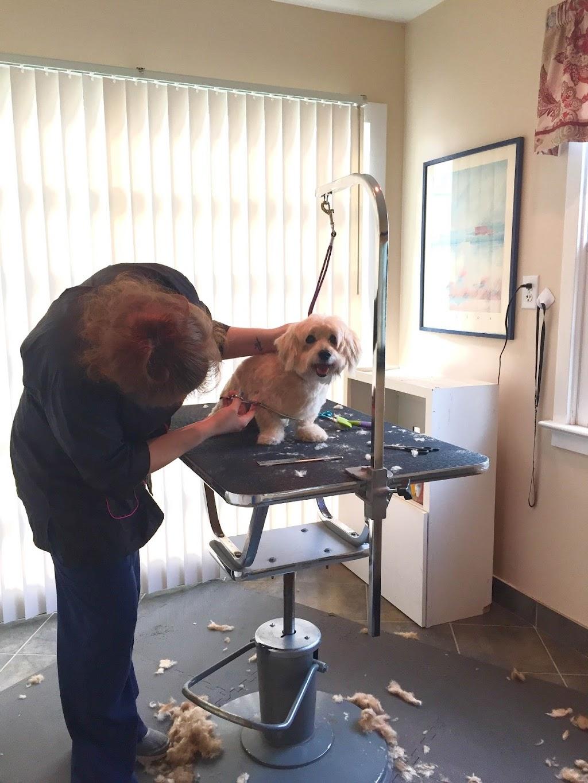 Kiln Creek Animal Care - veterinary care  | Photo 7 of 10 | Address: 900 Brick Kiln Blvd, Newport News, VA 23602, USA | Phone: (757) 886-1300