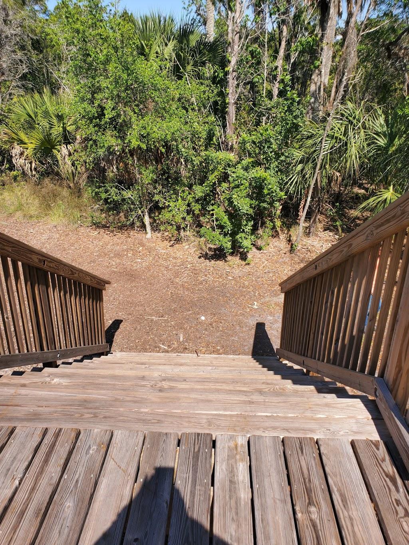 Pasco Palms Preserve - park    Photo 1 of 10   Address: 4466 Trouble Creek Rd, New Port Richey, FL 34652, USA   Phone: (727) 847-8140