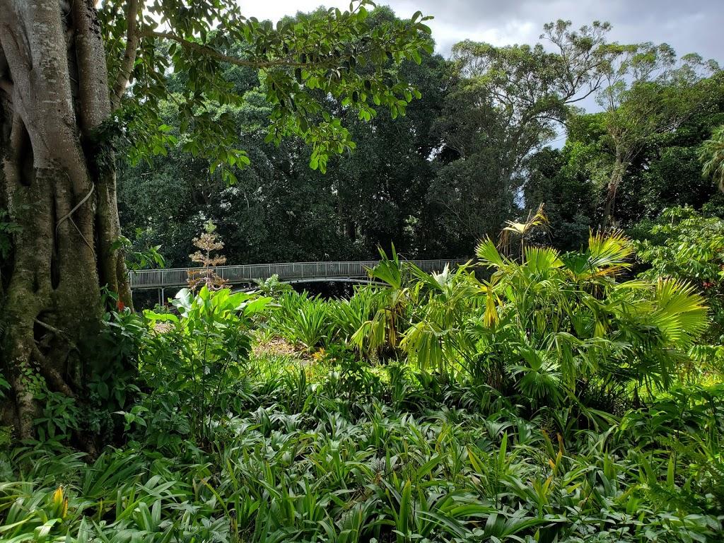 Wahiawā Botanical Garden - park  | Photo 1 of 10 | Address: 1396 California Ave, Wahiawa, HI 96786, USA | Phone: (808) 621-7321