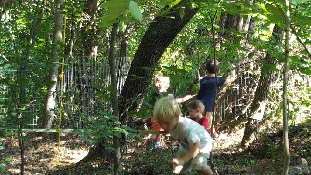 Wildflower Preschool & Kindergarten - school  | Photo 4 of 10 | Address: 3100 Damascus Church Rd, Chapel Hill, NC 27516, USA | Phone: (919) 260-6859