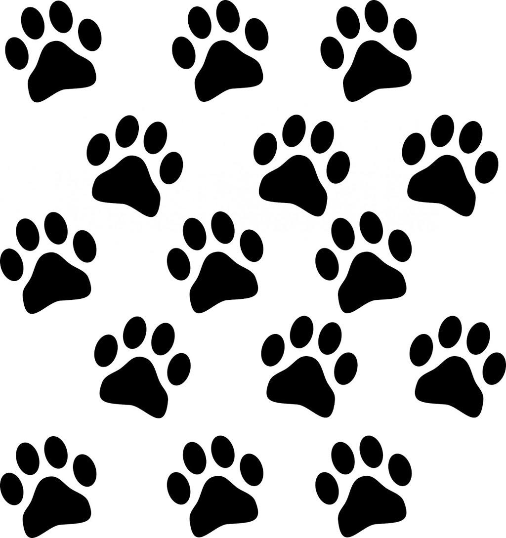 Golden State Humane Society - veterinary care  | Photo 5 of 10 | Address: 555 E Artesia Blvd, Long Beach, CA 90805, USA | Phone: (562) 423-8406