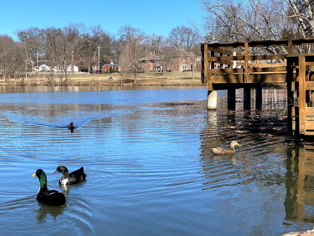 Tilles Park - park  | Photo 6 of 10 | Address: 9551 Litzsinger Rd, St. Louis, MO 63124, USA | Phone: (314) 615-4386