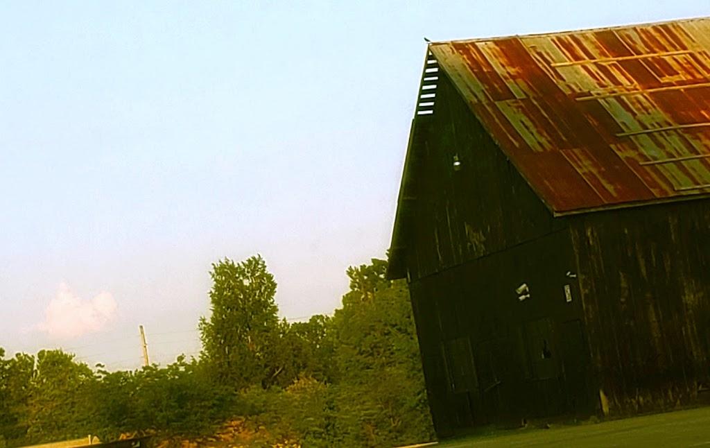 Lighthouse of Prayer Inc - church  | Photo 4 of 6 | Address: 9600 Cane Run Rd, Louisville, KY 40258, USA | Phone: (502) 933-4440