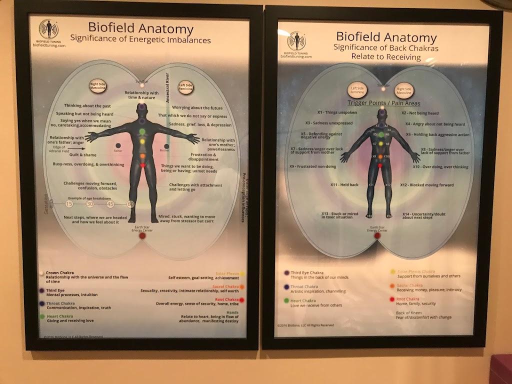 Biofield Tuned by Lynne B - health  | Photo 2 of 9 | Address: 12487 Rose Path Cir, Fairfax, VA 22033, USA | Phone: (703) 887-9101