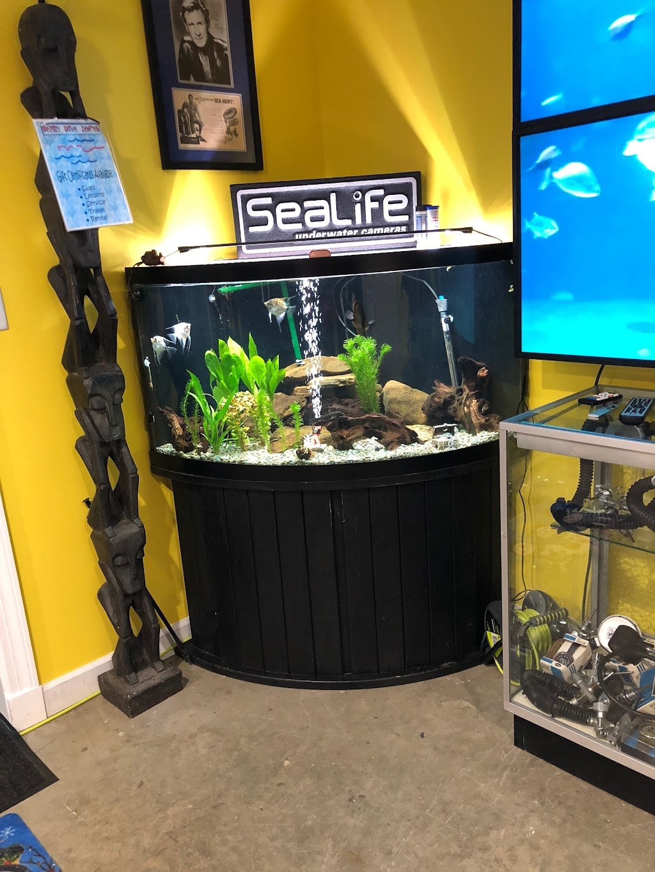 Berry Scuba & Swim School - travel agency  | Photo 8 of 10 | Address: 200 Northfield Rd, Northfield, IL 60093, USA | Phone: (847) 827-3100