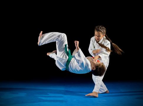 Karate Kens - health  | Photo 1 of 6 | Address: 5901 S Transit Rd, Lockport, NY 14094, USA | Phone: (716) 439-1198